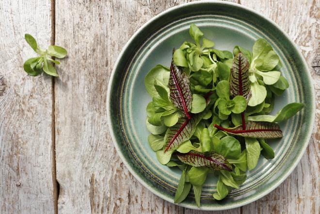 Zielona sałatka z krwistego szczawiu i  roszponki -  dawka witamin na wiosnę